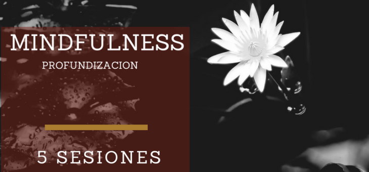 Mindfulness Profundización